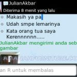Mas Julian